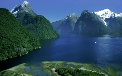 Fiordland National Park Ship Tracker Live Port Traffic