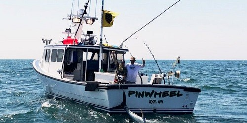 PinWheel - Wicked Tuna (TV)